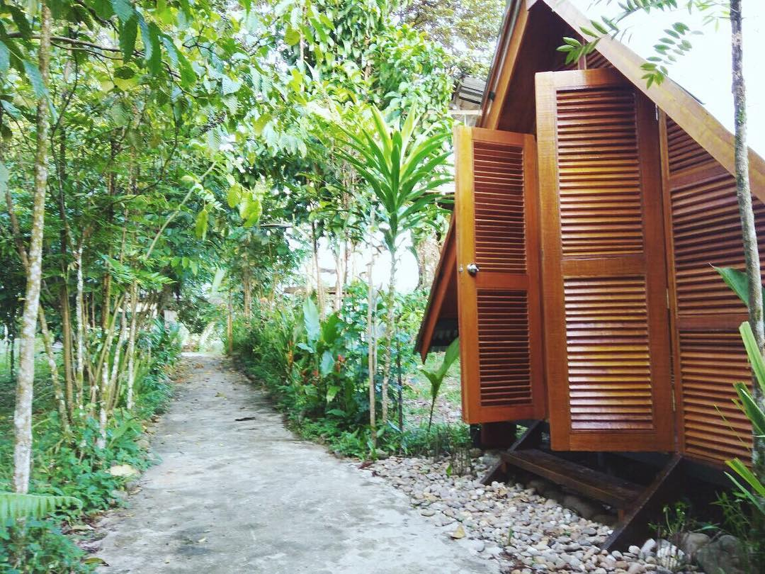 Temburong lodge sees strong demand for glamping