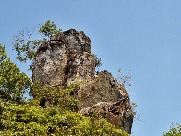 Berambang Island Explorer