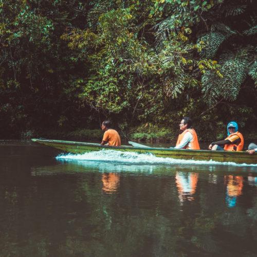 Temuai on Temburong river at Sumbiling Eco Village